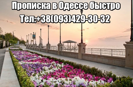 Прописка в Одессе быстро